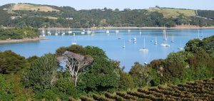 Goldie Estate Vineyard looking over Putiki Bay 300x142 - Gallery