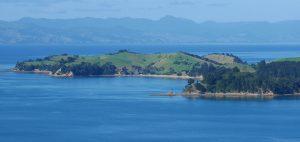 Putiki Bay at low tide