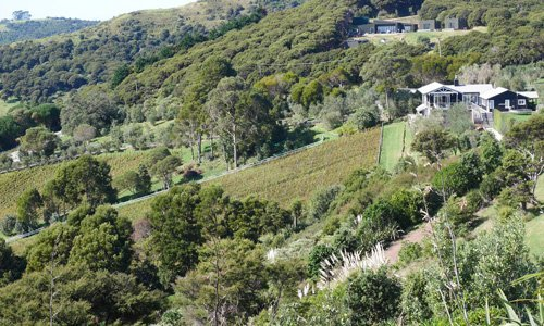 Frenchmans Hill Vineyard - Wineries