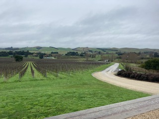 Black Estate view - From Waiheke Island to Curio Bay and back.